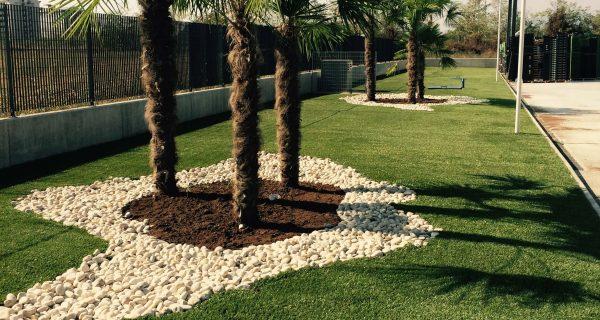 Realizzazione giardino presso azienda privata